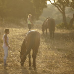 Residenze Myrsine, un giro a cavallo immersi nella natura