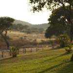 Residenze Myrsine - paesaggio